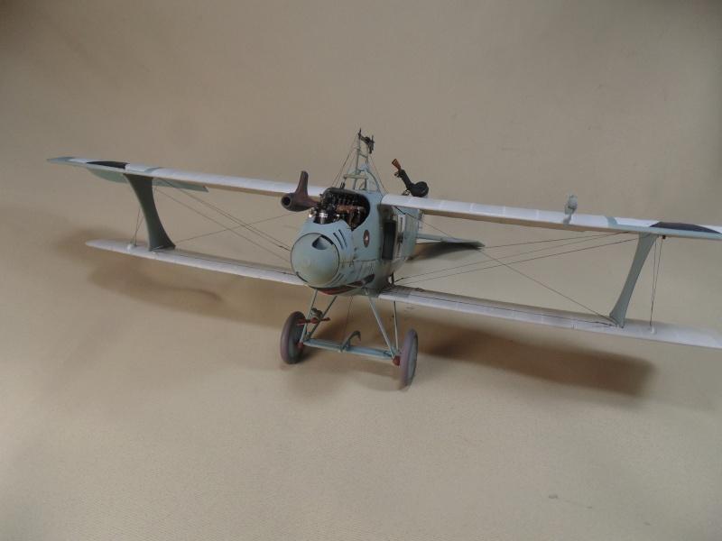 roland CII 1/32 wingnut wing Dsc00748
