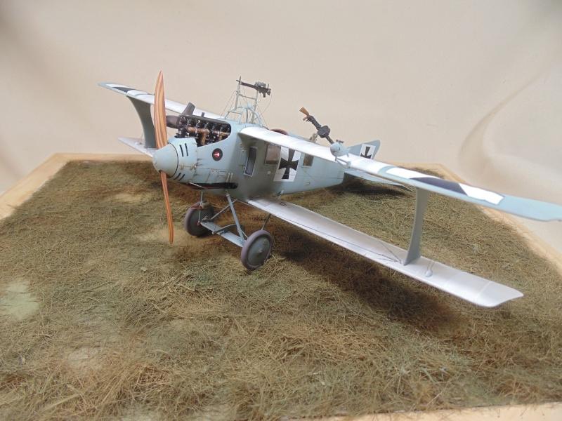 roland CII 1/32 wingnut wing Dsc00757