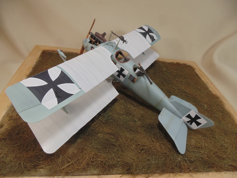 roland CII 1/32 wingnut wing Dsc00758