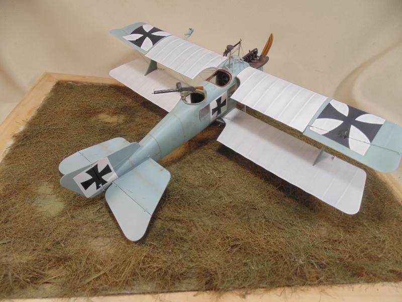 roland CII 1/32 wingnut wing Dsc00759