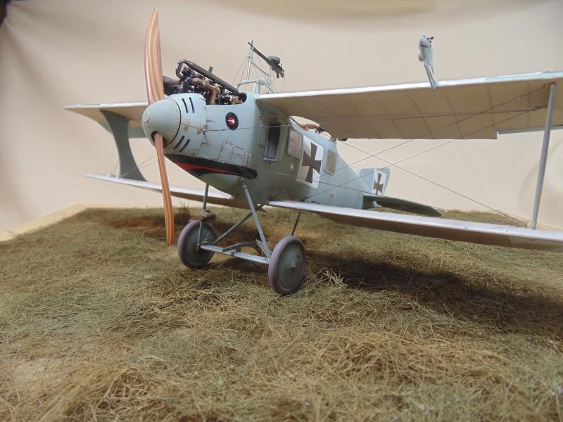 roland CII 1/32 wingnut wing Dsc00761