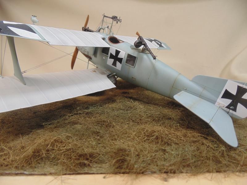 roland CII 1/32 wingnut wing Dsc00762