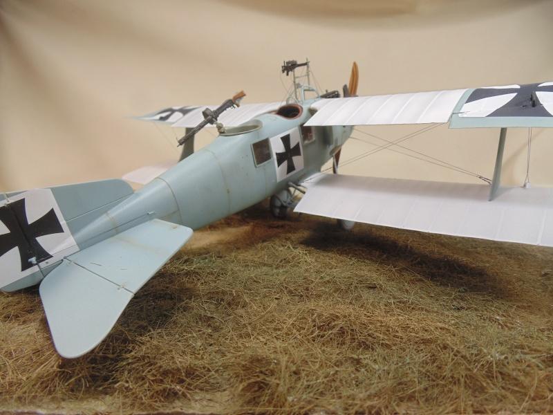 roland CII 1/32 wingnut wing Dsc00763