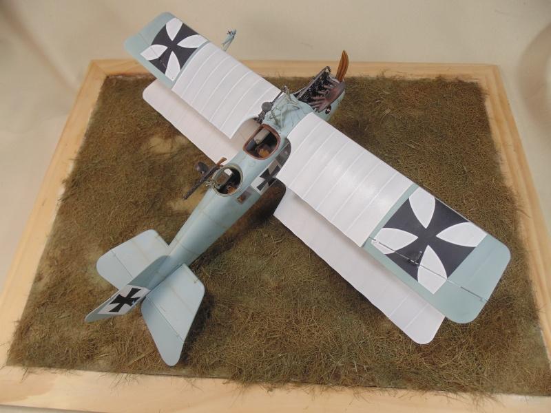 roland CII 1/32 wingnut wing Dsc00764