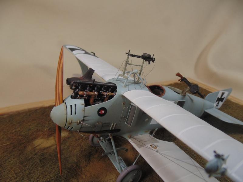 roland CII 1/32 wingnut wing Dsc00765