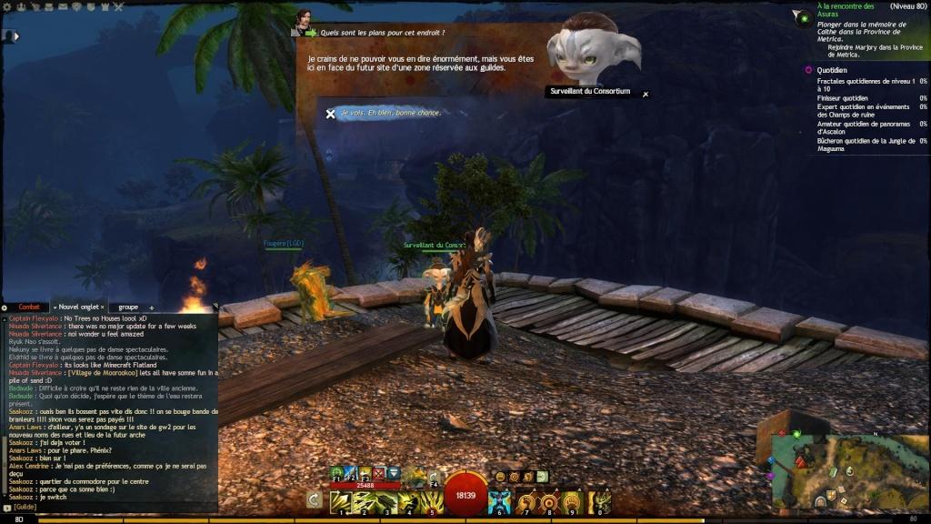 Nouvelle Arche du Lion ! Gw58112