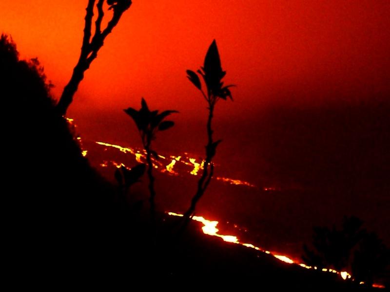 ile de La Reunion.....du volcan aux liparis Cimg0015