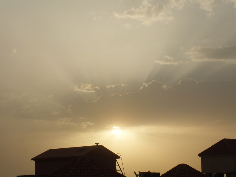 صور ما بعد المطر ( الخرج 1436/7/20 ) Dscf4111