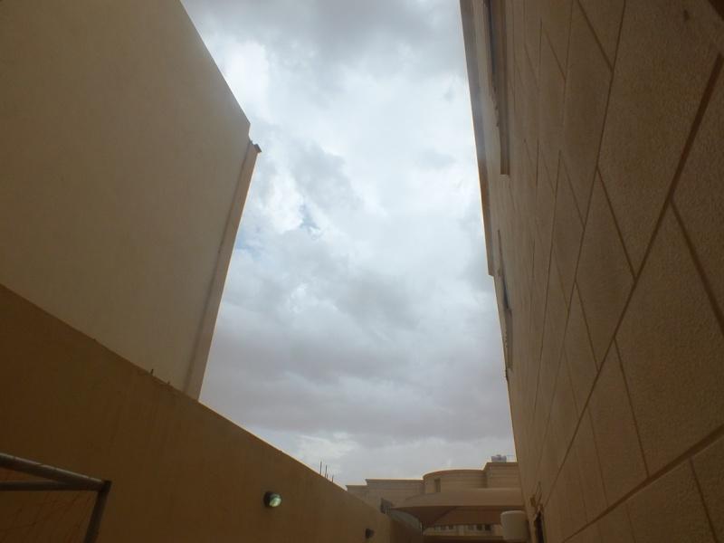 صور ما بعد المطر ( الخرج 1436/7/20 ) Dscf4112