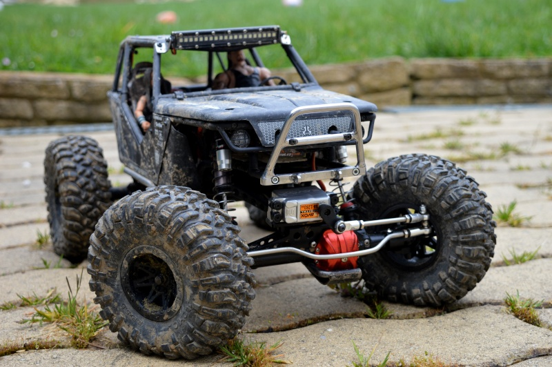 Axial wraith kit by gicab Nature10