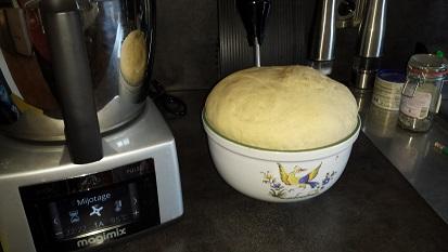Je découvre mon Cook Expert Magimix au fil de l'eau....et je vous dis tout !  - Page 4 Samsun21