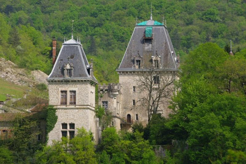 Château de la ceuille hammeau de Poncin; A_chat10