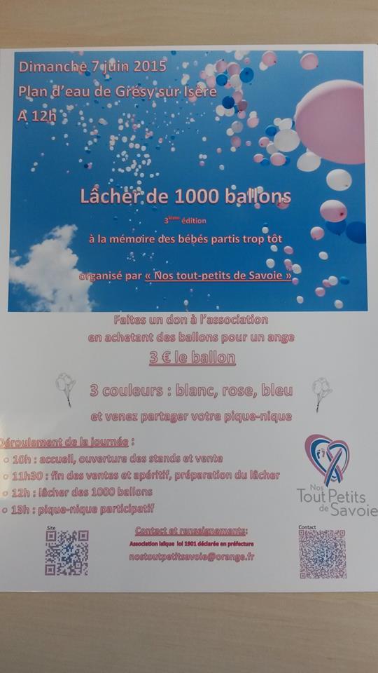 Lacher de ballon à Gresy sur Isère - 7 Juin 2015 - 11174910