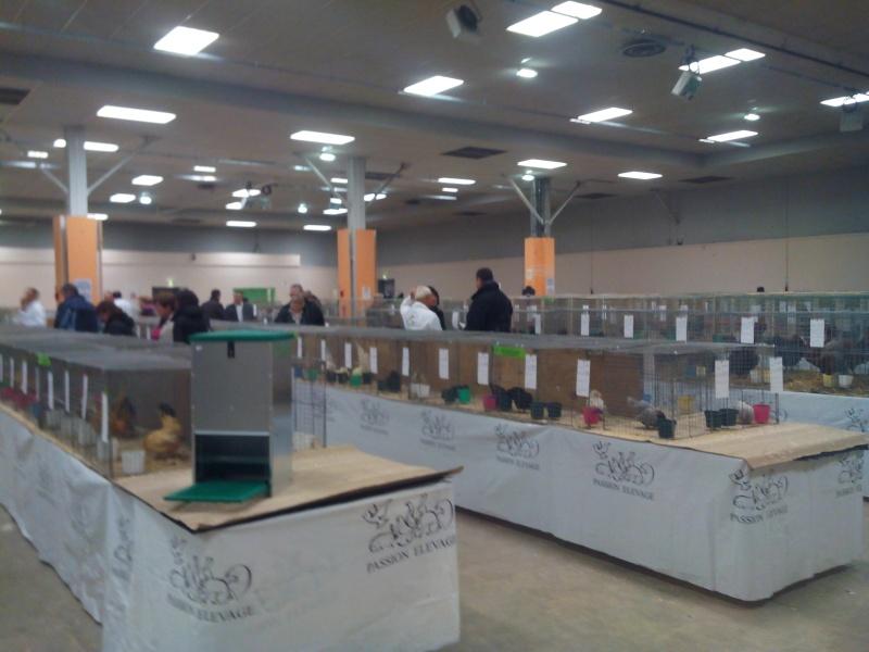 Exposition d'Angoulême 2015 Img_2022