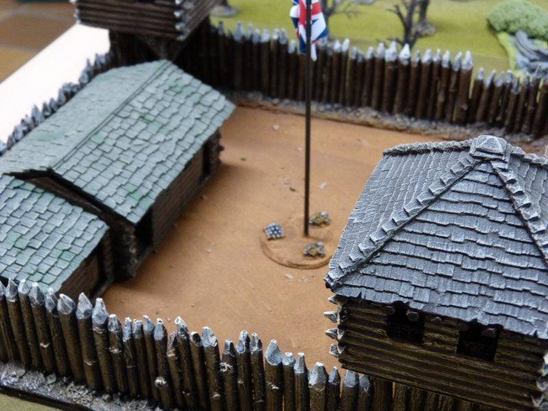 1755 - Colonie de Folkrock P1010423