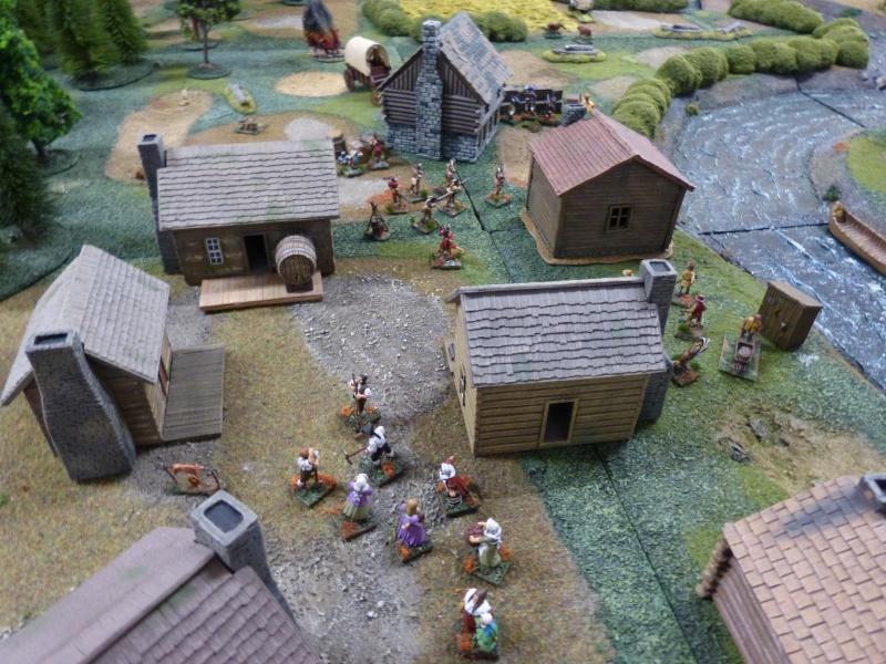 1755 - Colonie de Folkrock P1010424
