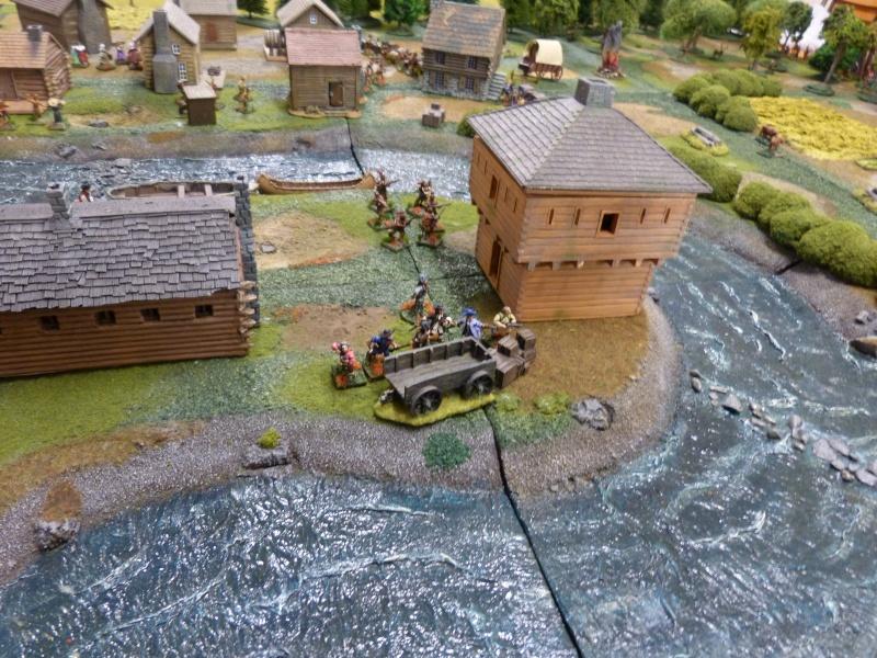 1755 - Colonie de Folkrock P1010425