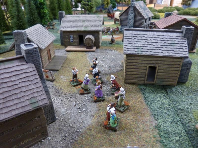 1755 - Colonie de Folkrock P1010430