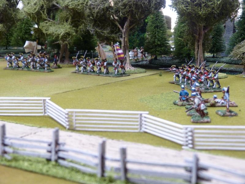 1755 - Colonie de Folkrock P1010511
