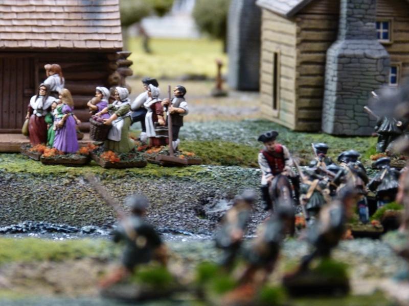 1755 - Colonie de Folkrock P1010524
