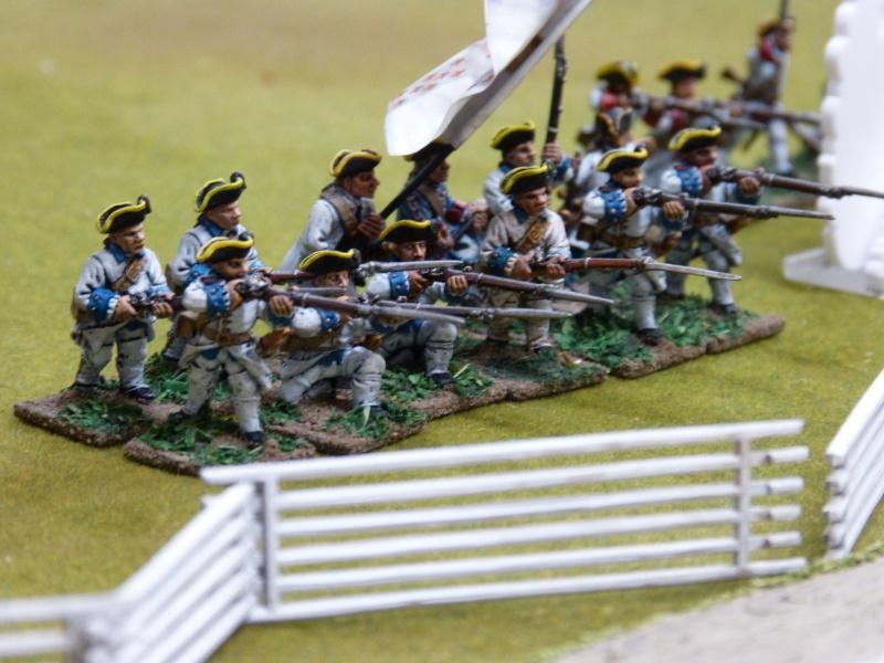 1755 - Colonie de Folkrock P1010528
