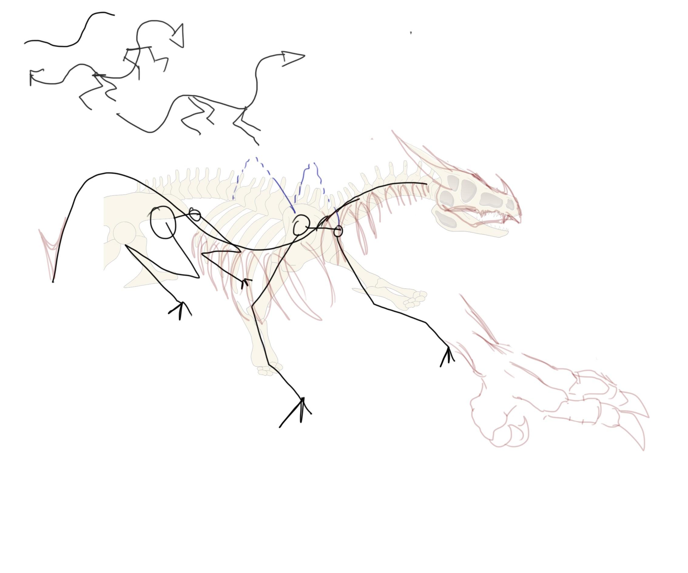 Squelette de dragon vectoriel [CyclopKiLouch] Dragon31