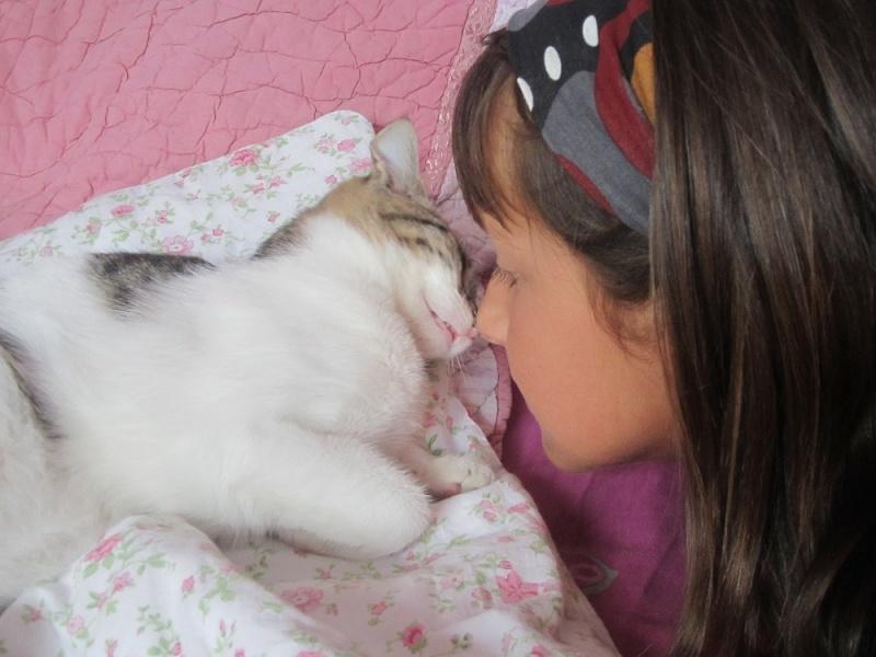 JOKE, chatonne tigrée et blanche, née début Mai 2014 Img_3210