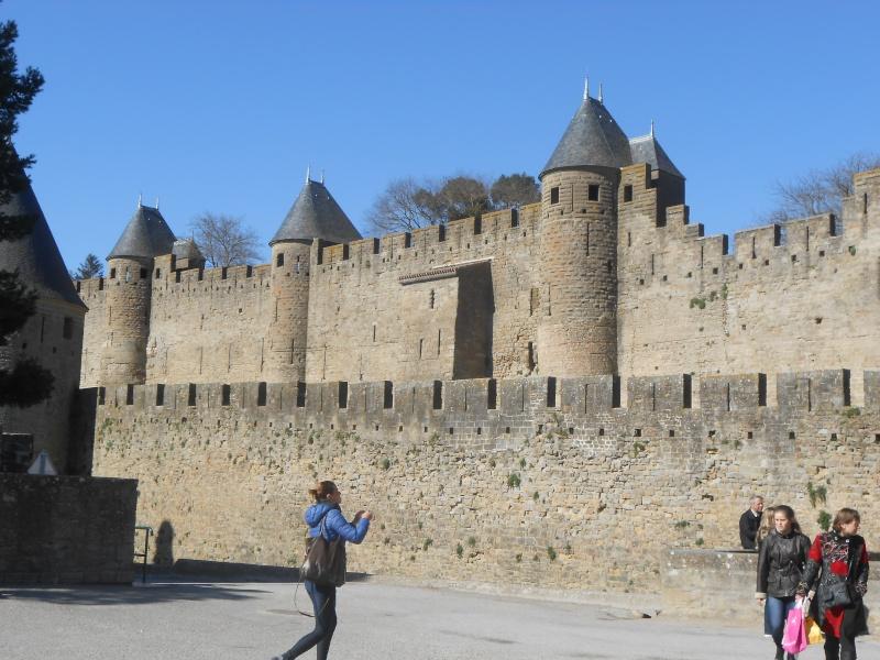 Cité de Carcassonne Dscn0614