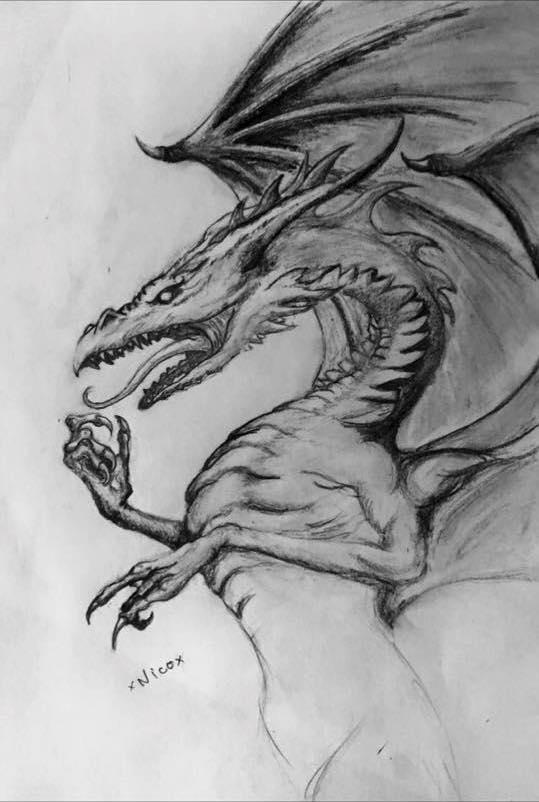 Galerie de Canegal Dragon10