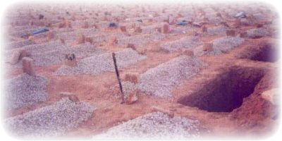 Construire sur des tombes  Py2rce10