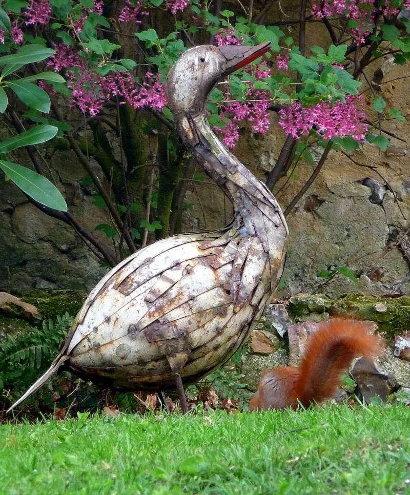 Nutsy ce matin dans notre jardin P1150615