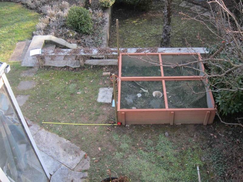 Extension du parc de mes petites boettgeri Img_4810