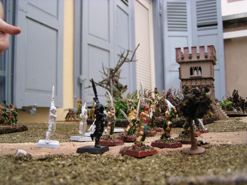 [4000 pts] ES vs alliance Nains & HE : une ancienne rancune  P1010014