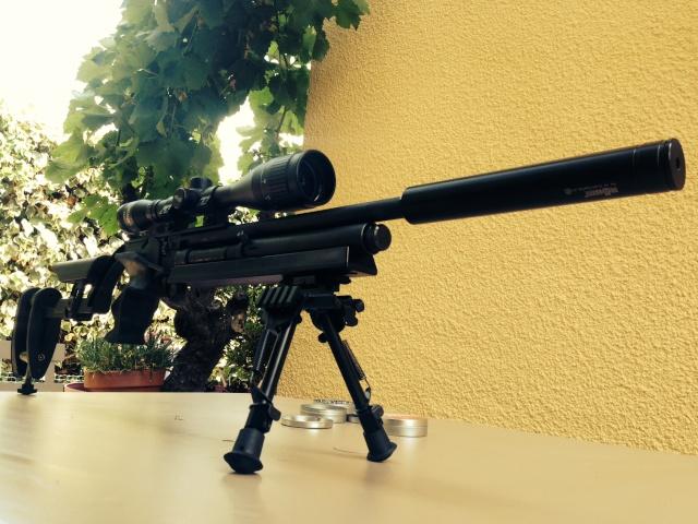 mes armes Desp_210