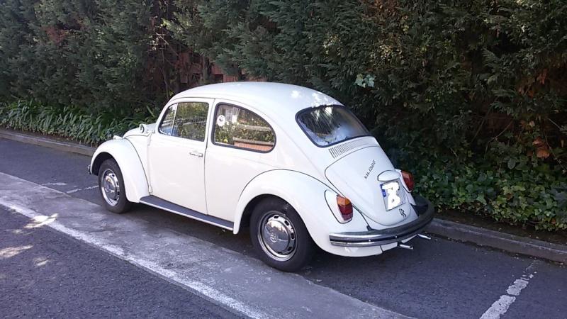 Vendo Escarabajo 1970 _ VENDIDO 20150313