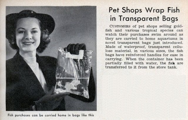 Fish Bag Ad from the 1960's 11259610