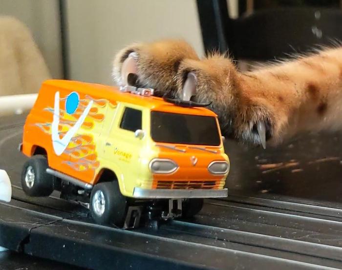 Vonage Van vs Catzilla!  Catzil10