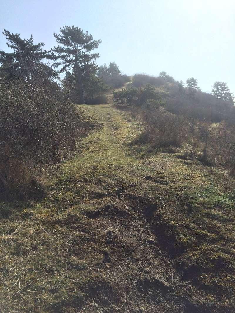 Sortie scale dans le 63 puy de dome en espace naturel Img_5627