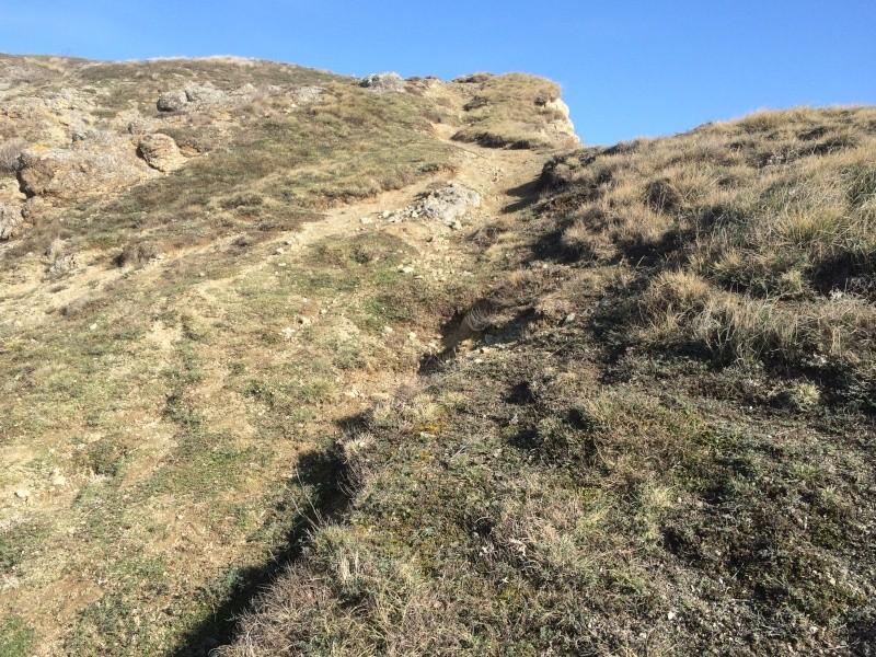 Sortie scale dans le 63 puy de dome en espace naturel Img_5632