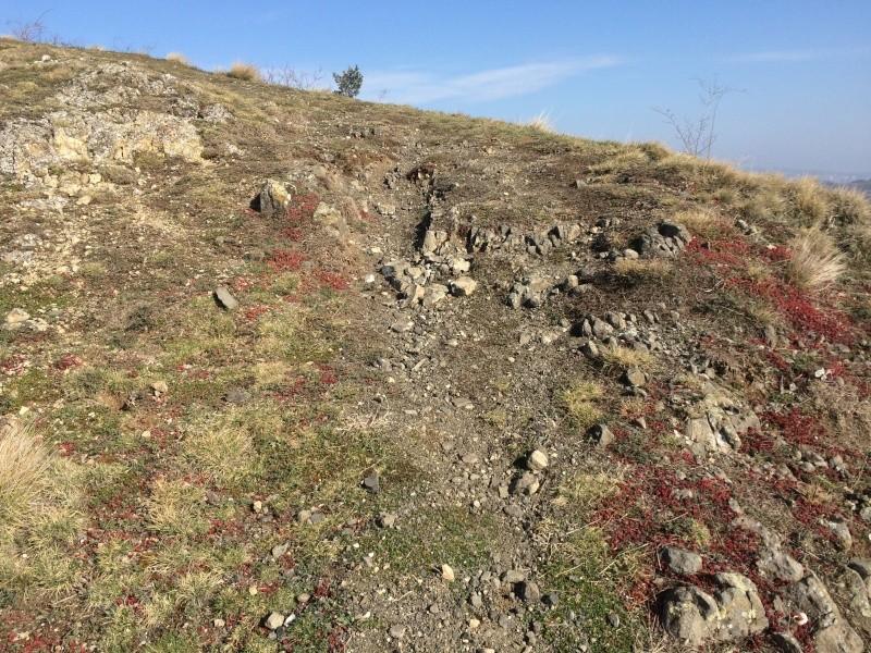Sortie scale dans le 63 puy de dome en espace naturel Img_5635