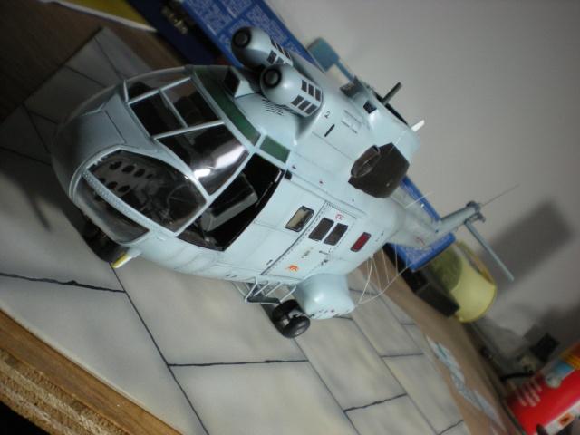 SA-330 Puma -1/32 -Revell - Page 2 Dscn7822