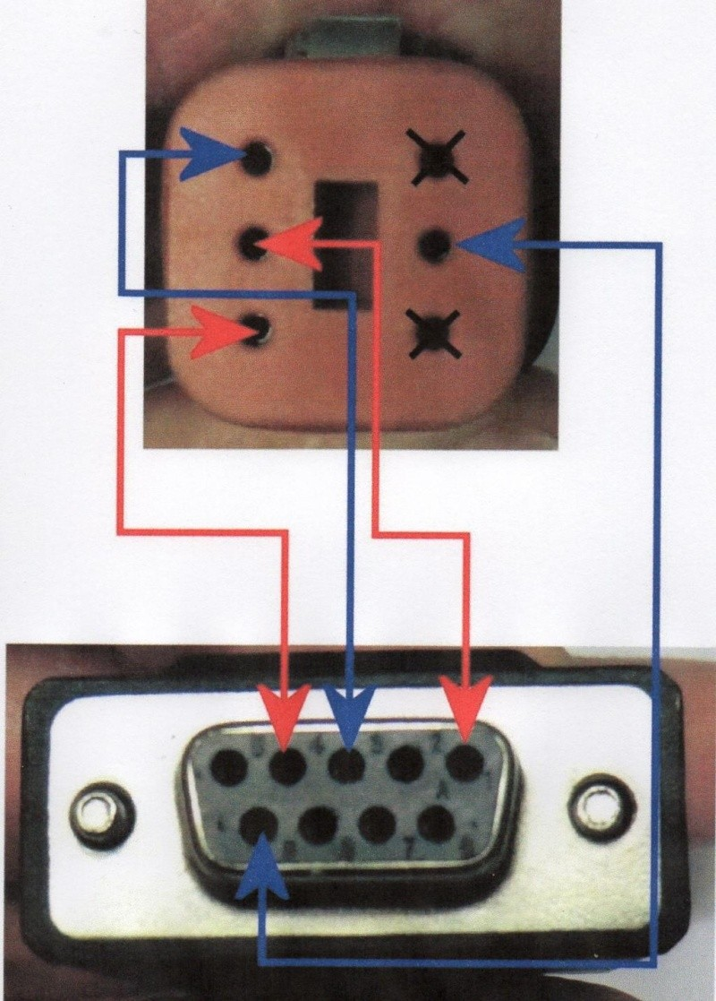 Câbles Screamin Eable Super Tuner Img02710