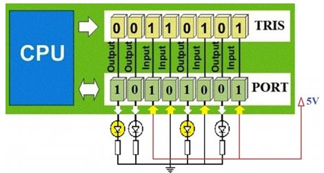 البداية مع الميكروكونترولر PIC والمترجم CCS C  210