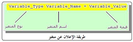 أنواع البيانات والمتغيرات :   Data Types and Variables 311