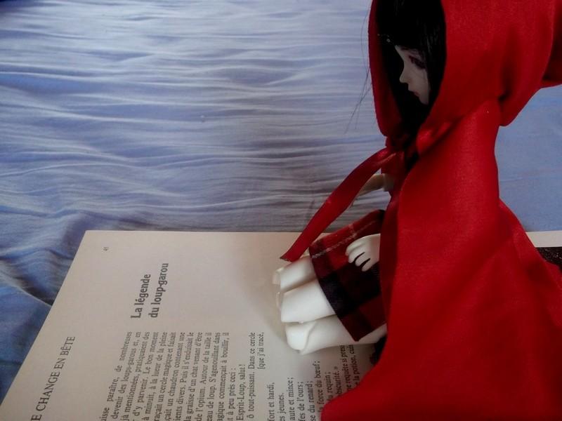 [Bei RS] Petite laine 13/01 - Page 5 Dscf3215