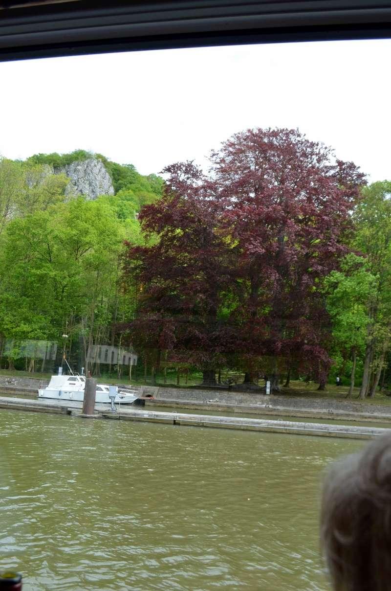 Croisière sur la Meuse le 9 mai 2015 - Page 5 Dinant80