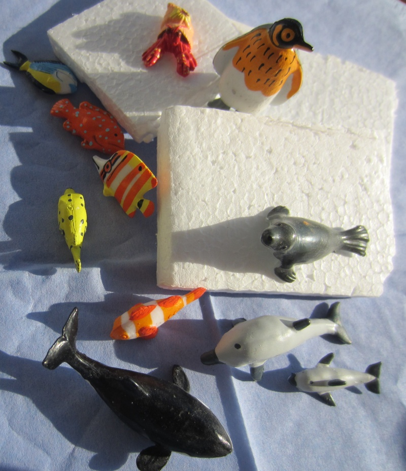 Panini Sealife animals for Susanne Img_5816
