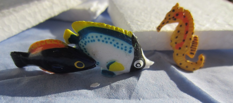 Panini Sealife animals for Susanne Img_5829