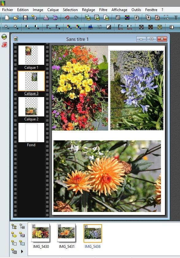 Comment mettre plusieurs photos sur une seule 10x15 410