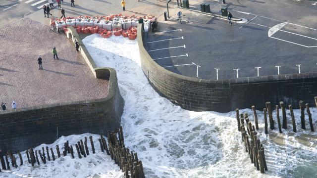 La marée du siécle Le-mon11